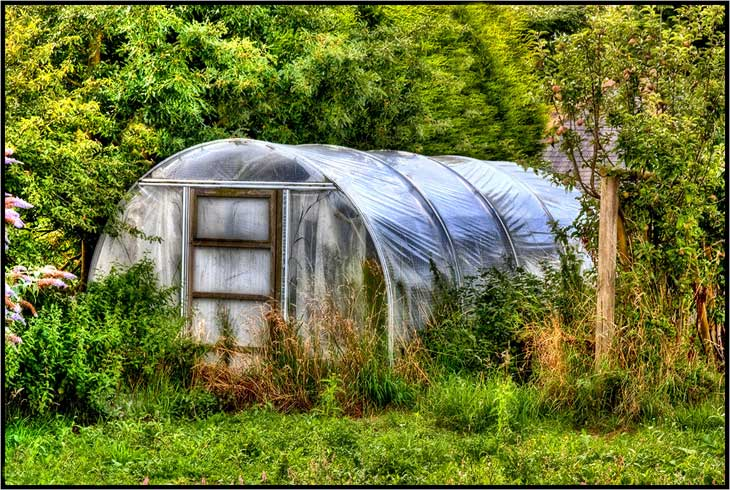 The Ultimate Greenhouse Resource List