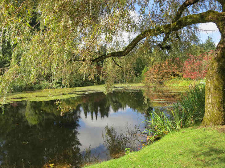 5 Eco Friendly Tips to Maintain Water on Your Property