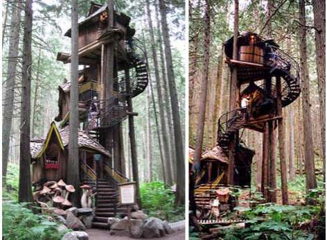 Fairytale forest treehouse British Columbia