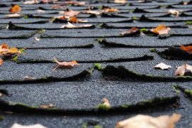 Asphalt roof shingles - Prevention through design