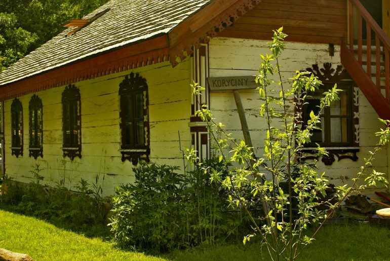 Light green house with plants outside - Green living at home