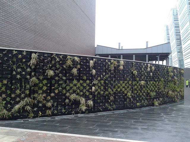 Living wall on building