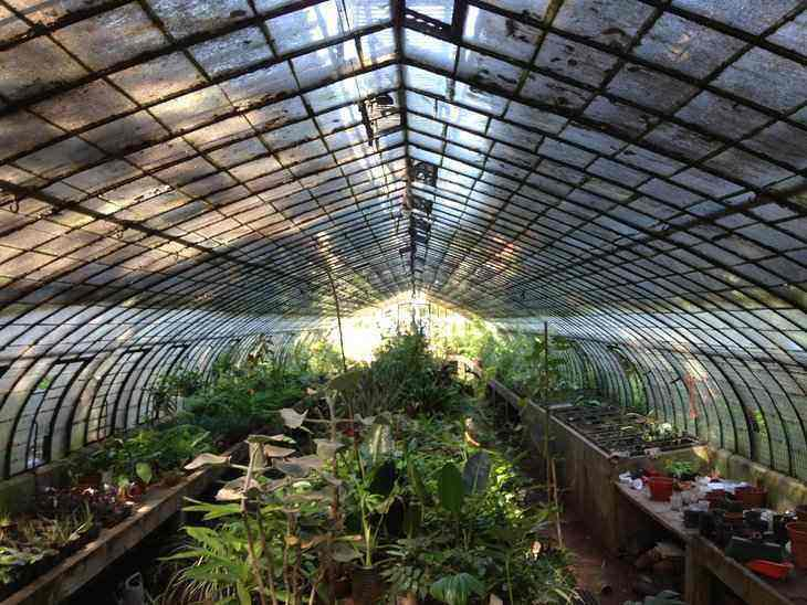 Exploring Greenhouse Cover Options