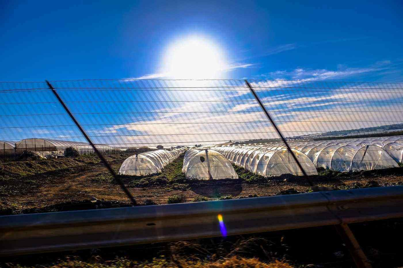 sun shining on greenhouses - greenhouse climate control
