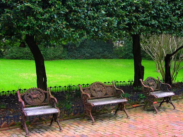 Benches in garden