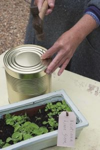 Making drainage holes in tin can - Upcycled tin can display