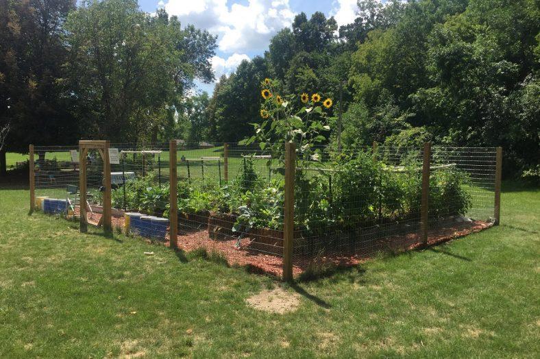 Completed straw bale garden in schoolyard - Schoolyard garden