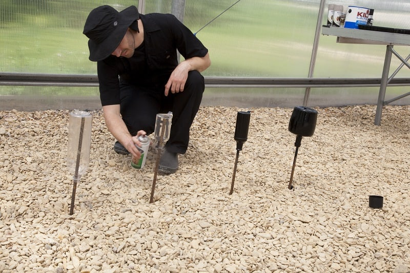 Man painting bottles on stakes - How to build a bottle hydroponic garden