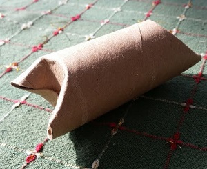 Old toilet paper roll with pet treat inside - 11 ways to make pet toys out of old junk
