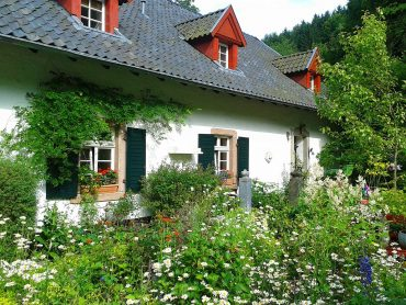 House with lots of plants outside - 9 ways to measure the health of your home