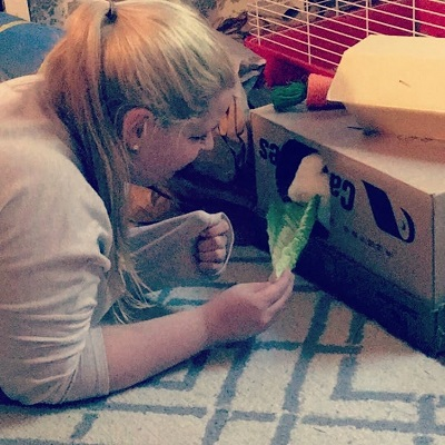 Rabbit nibbling lettuce while in cardboard box fortress - 11 ways to make pet toys out of old junk