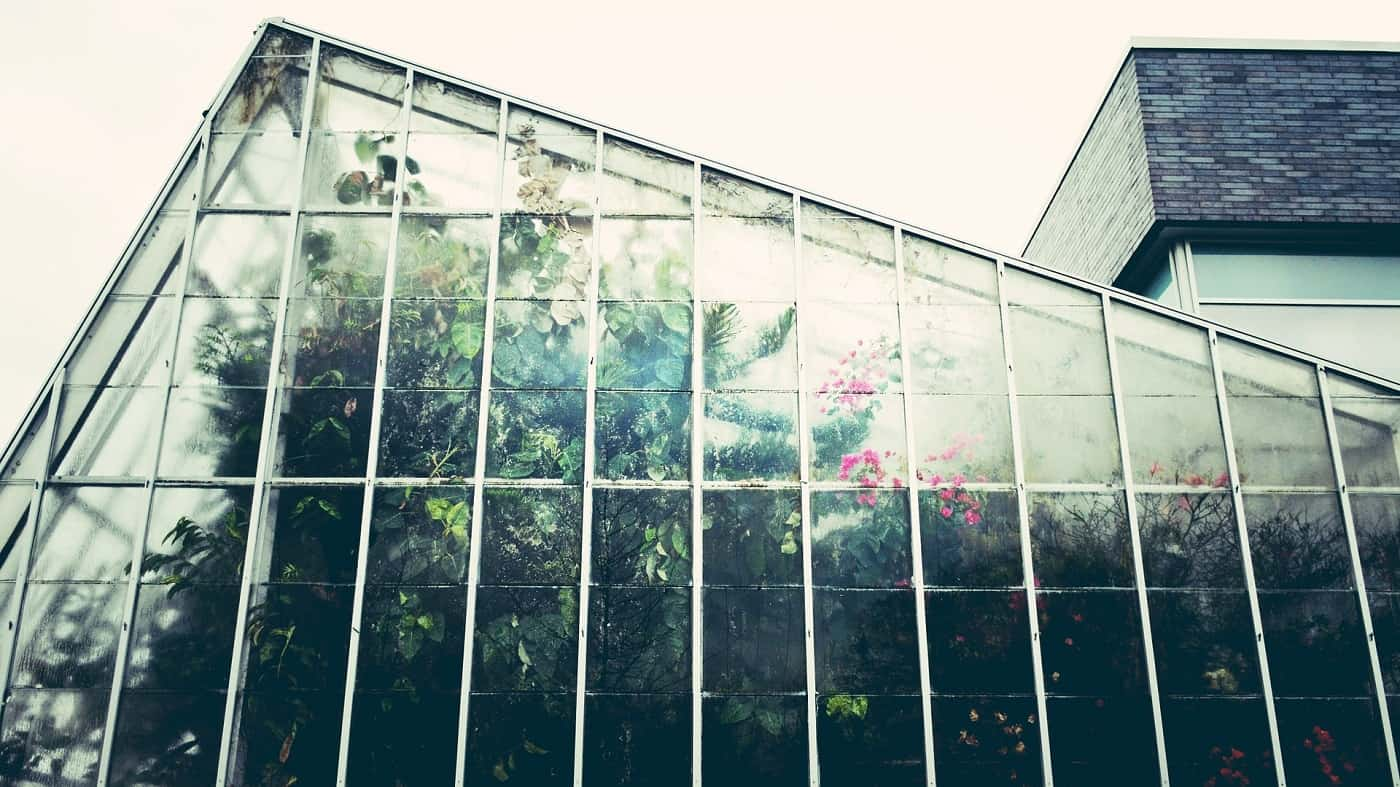 Tall transparent greenhouse via Pixabay